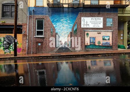Street Art / Murals on Walnut Street in Downtown Asheville, North Carolina, USA