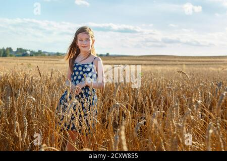 A little girl stands in a field in the middle of wheat ears and squints at the sun