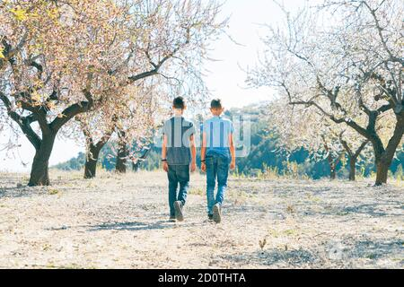 Kid walking in blossoming almond tree garden at sunny day in Spain - Stock Photo
