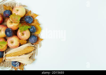 Hello autumn. autumn flat lay with leaves, plums and apples on white background. - Stock Photo