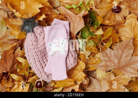 Hello october. autumn flat lay with leaves, chestnuts, hat and scarf. - Stock Photo