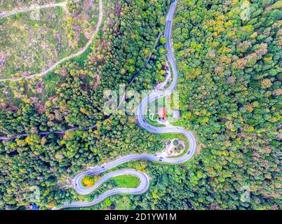 Winding Road surrounded by a colourfull trees in the forest. Aerial drone view. Kesselberg