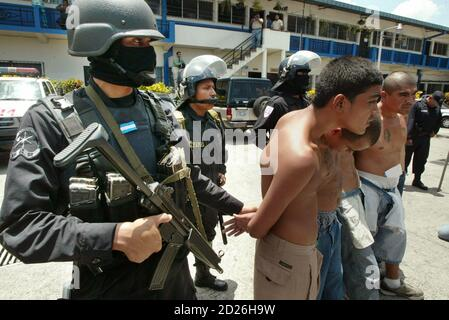 Gang members are escorted after being captured by riot police in San Salvador September 8, 2005. Authorities announced that the Simultaneous International Anti-Gang Operations in five different countries - Mexico, Guatemala, El Salvador, Honduras and the United States - have netted some 660 suspects. REUTERS/Luis Galdamez  LG/CCK - Stock Photo