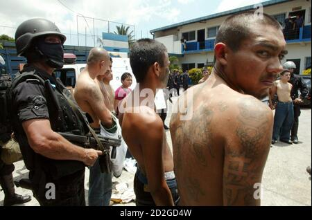 Gang members are escorted after being captured by riot police in San Salvador September 8, 2005. [Authorities announced that the Simultaneous International Anti-Gang Operations in five different countries -- Mexico, Guatemala, El Salvador, Honduras and the United States -- have netted some 660 suspects.] - Stock Photo