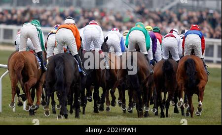 Horses and jockeys approach a fence during The Novices Hurdle Race at the Cheltenham Festival horse racing meet in Gloucestershire, western England March 17, 2010. The four-day race meet began yesterday and culminates on Friday with the Cheltenham Gold Cup.   REUTERS/ Eddie Keogh (BRITAIN - Tags: SPORT HORSE RACING) - Stock Photo
