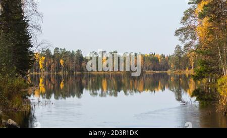 Great view of the lake, pine forest on its shore and pine trees covered islands. Silence of good autumn day. Wonderful reflections of the autumn trees in the water. - Stock Photo