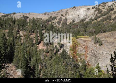 MT. ROSE, NEVADA, UNITED STATES - Sep 27, 2020: A view of Galena Falls, a waterfall along the trail to the Mt. Rose Peak in the Reno, Nevada area. - Stock Photo