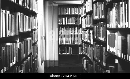 Books on bookshelves in the public library room background. School book in bookshelf beautiful concept. black and white. - Stock Photo