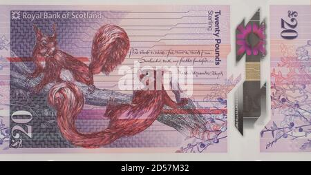 dh Scottish 20 pound banknote MONEY SCOTLAND New plastic polymer notes £20 twenty Royal Bank of Scoland cutout paper front note pounds currency