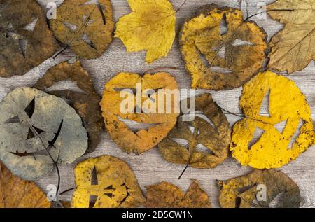 dry foliage on a wooden background. on the leaves made a scary mask. holiday of Halloween.