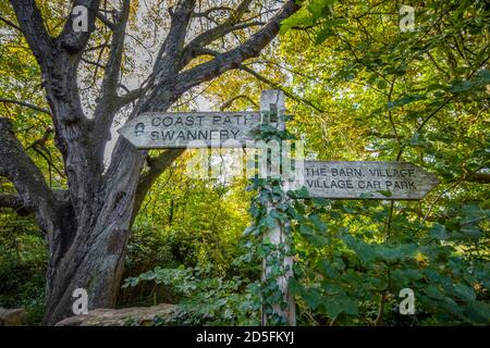 Typical wooden fingerpost direction sign on the South West Coast Path on the Heritage Coast pointing to Abbotsbury Swannery and Tithe Barn, Dorset - Stock Photo