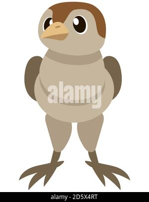 Baby turkey front view. Farm animal in cartoon style. - Stock Photo