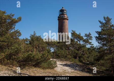 Leuchtturm im Dünenwald auf dem Darß an der Ostsee - lighthouse at Darß peninsula, Gemany Baltic coast - Stock Photo
