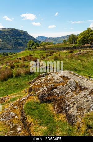 Rural scene near Ullswater in the Lake District National Park