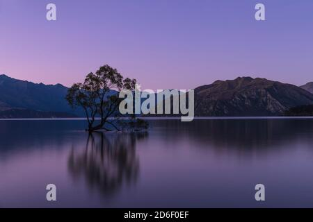 Lake Wanaka at the blue hour, Mount Aspiring National Park, UNESCO World Heritage Site, Otago, South Island, New Zealand, Oceania