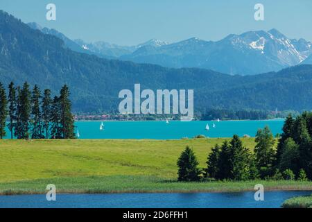 Sailboats on the Forggensee in summer, Allgäu, Upper Bavaria, Germany - Stock Photo