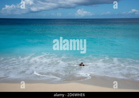 Frederiksted, St. Croix, US Virgin Islands-December 22,2019: Tourist bodysurfing at Sandy Point beach with pure blue Caribbean Sea waters on St. Croix