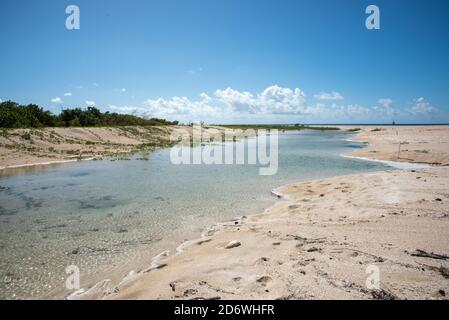 Frederiksted, St. Croix, US Virgin Islands-December 22,2019: Tourist at Sandy Point beach with Caribbean Sea waters and greenery on St. Croix