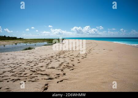 Frederiksted, St. Croix, US Virgin Islands-December 22,2019: Tourists at Sandy Point beach with pure blue Caribbean Sea waters on St. Croix