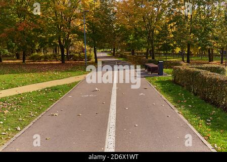 Paved road in the Park,divided by markings on the Bicycle and pedestrian parts.