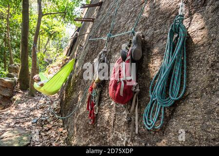View to male rock climber resting on hammock in the rainforest, Rio de Janeiro, Brazil - Stock Photo