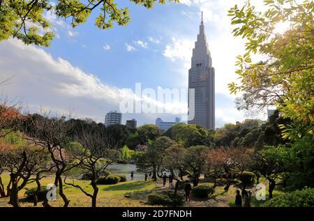 Shinjuku Gyoen garden with NTT Docomo Yoyogi Building in the background.Shinjuku.Tokyo.Japan