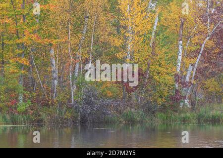 Autumn morning on a wilderness lake in northern Wisconsin. - Stock Photo