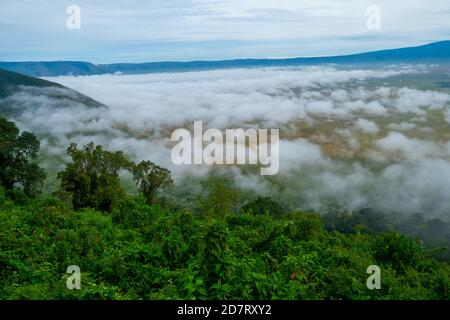 Ngorongoro Conservation Area, is a protected area and a World Heritage Site located 180 km (110 mi) west of Arusha in the Crater Highlands area of Tan Stock Photo