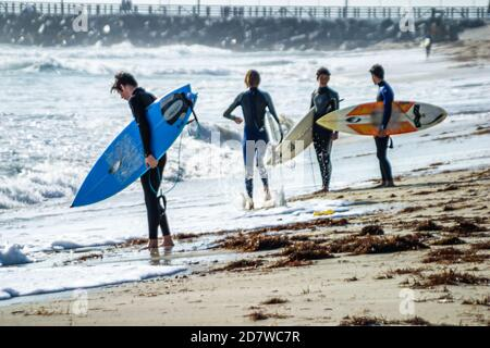 Florida Miami Beach Atlantic Ocean shore shoreline seashore surfer surfers surfboard surfboards teen teenager teens teenagers male boy boys surf waves
