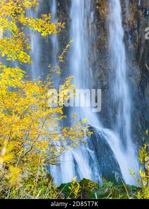 Fluid Water flowing pouring pour waterfalls waterfall long exposure behind Autumnal scenery in Plitvice lakes national park situated in Croatia Europe