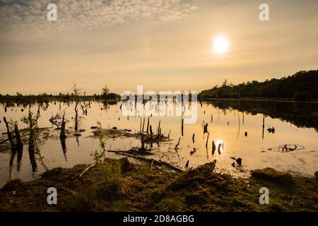Scenic view of moor landscape in Lower Saxony. The Great Moor is part of the moorland between Barnsdorf and Vechta. Setting sun reflected in water. - Stock Photo