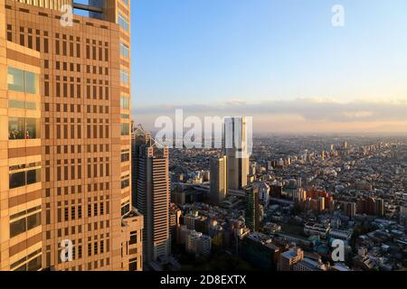 Tokyo skyline under late afternoon sunlight with Tokyo Metropolitan Government Building in foreground.Tokyo.Japan Stock Photo