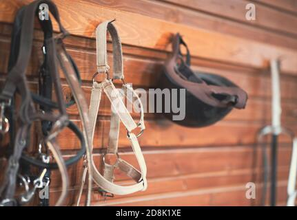 Horse riding concept items, helmet and bridle hangs on a wooden wall - Stock Photo