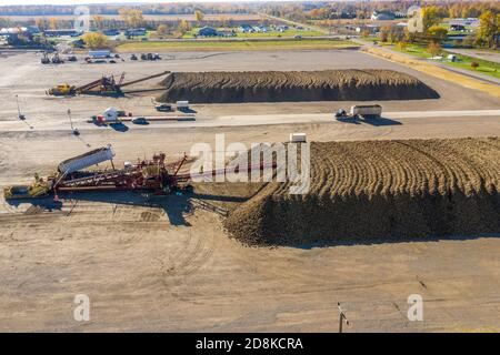 Croswell, Michigan - Sugar beets are piled up after harvesting in the autumn, awaiting processing at the Michigan Sugar Company. The company is a farm Stock Photo