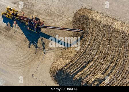 Croswell, Michigan - Sugar beets are piled up after harvesting in the autumn, awaiting processing at the Michigan Sugar Company. The company is a farm - Stock Photo