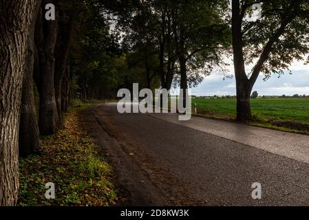 Bend road on highway in countryside on cloudy day - Stock Photo