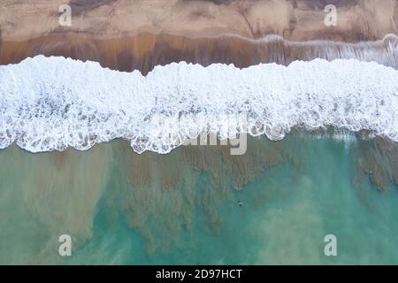 BROWN PELICAN - PELICANO PARDO (Pelecanus occidentalis), Pacific Ocean, Lo de Marcos village, Riviera Nayarit, Pacific Ocean, Nayarit State, Mexico, C