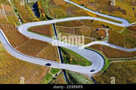 A serpentine country road winding through autumnal vineyards in the Leytron wine-growing region, Leytron, Valais, Switzerland