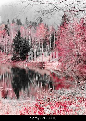 Stunning Lokve lake in Croatia Europe monochrome altered Red color - Stock Photo