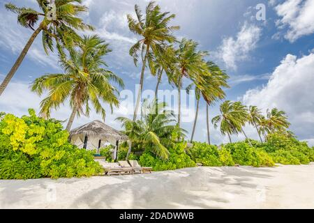 Maldives paradise tropical beach. Amazing view, blue turquoise lagoon water, palm trees and white sandy beach. Luxury travel vacation destination