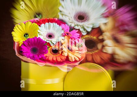Blurred floral background, double exposure, colorful multicolored gerbera flowers in yellow box. Concept of holidays and gifts