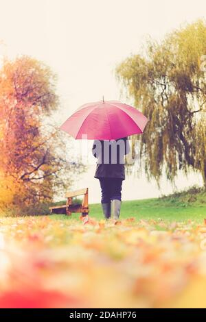 Rear view of woman with umbrella isolated outdoors walking away in autumn countryside with fallen autumn leaves in foreground. - Stock Photo