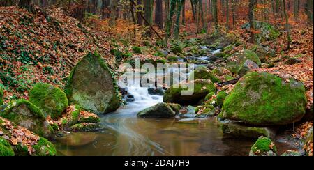 The river Sembera sources near to community of Jevany, Central Bohemia in an altitude of 415 m.