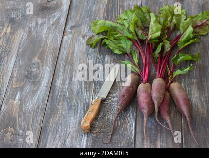 Fresh organic beetroot with a knife on a wooden surface, top view, selective focus - Stock Photo