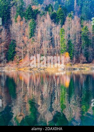 Stunning late Autumnal lake reflection with hint of first morning dribble waves Lokve lake Lokvarsko jezero in Croatia Europe - Stock Photo
