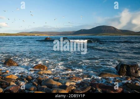Blue Atlantic ocean waves crashing on Orkney shore in bright afternoon light - Stock Photo