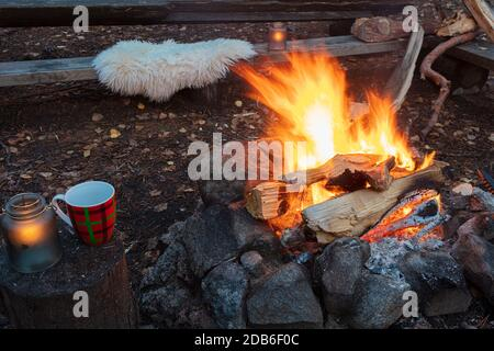 Bonfire in the evening outdoors. Vacation concept. High quality photo - Stock Photo
