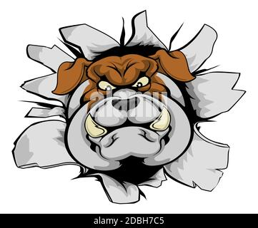 A mean looking bulldog mascot character breaking out through a wall - Stock Photo
