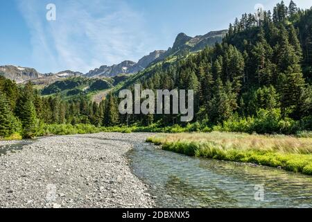 River flowing into Prince William Sound; Alaska, United States of America