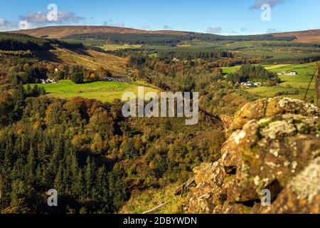 Autumn coloured trees in the valley of Glenariff Forest Park. View from the top of the surrounding cliffs, Count Antrim, Northern Ireland